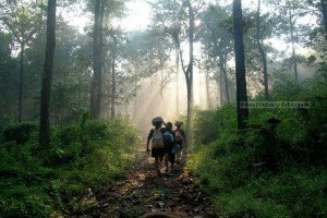 kasragali-nature-stay-trekking