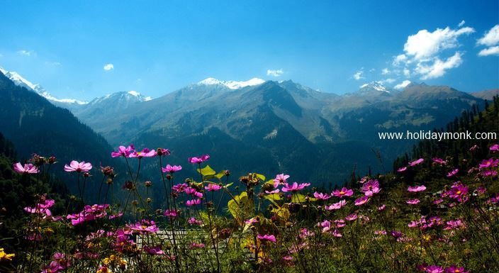 Shimla-Manali-Himachal-Pradesh-Tour-5