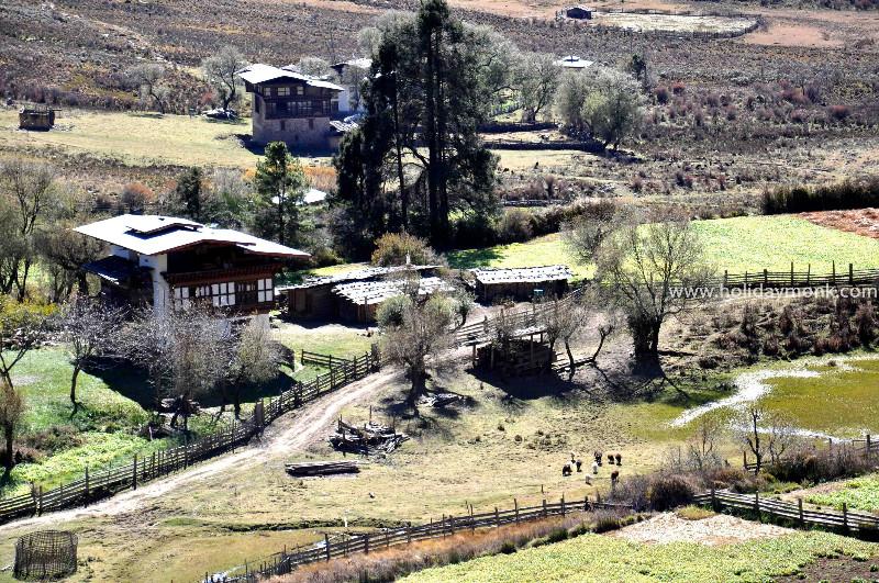 Bhutan-village
