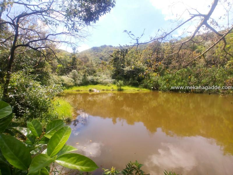 Bettada-Byraveshwara-Temple-Pond