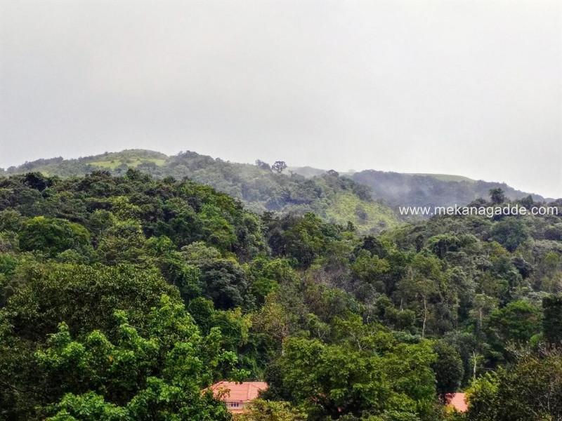 Mekanagadde-Homestay-Backdrop-Hills