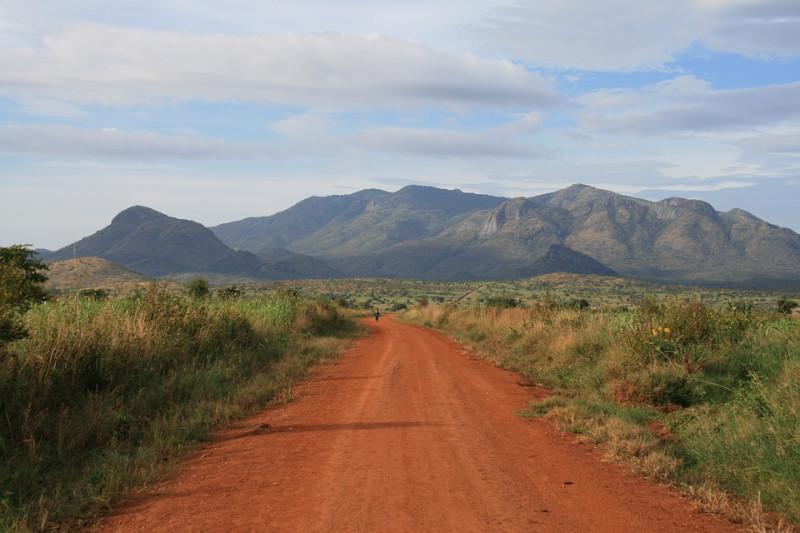 African-Safari-Tracks